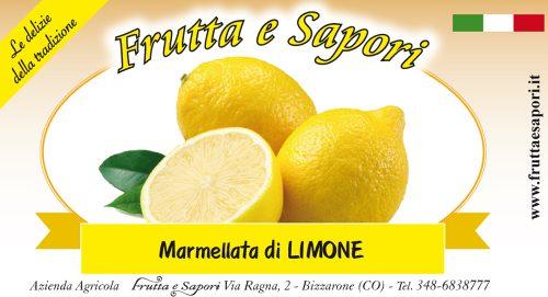 Marmellata di limone non trattati naturali 220g